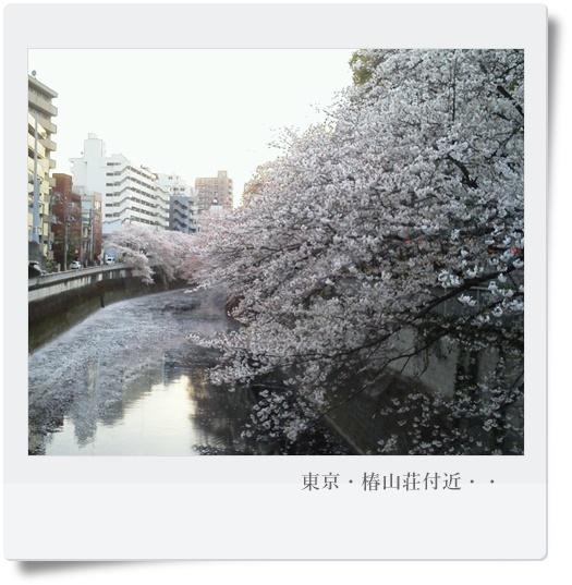 椿山荘⑦.jpg